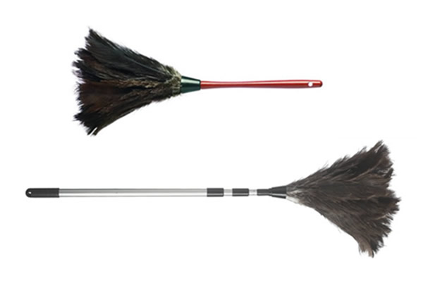 Standard And Extendable Duster 163 50 00 Dustease Ostrich
